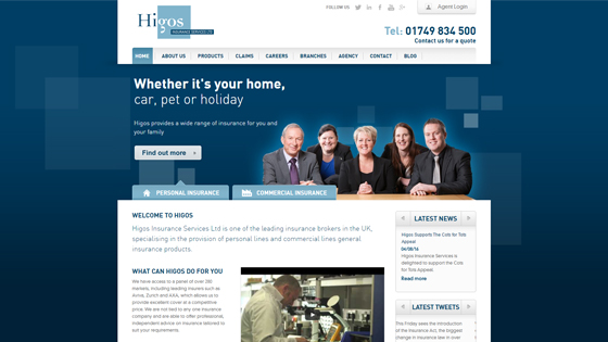 higos-insurance-services-limited