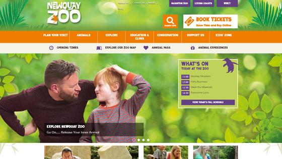 newquay-zoo-newquay